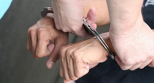 Diduga Judi Sabung Ayam, 8 Pelaku Diamankan Polisi Pasaman